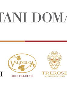 Bertani Domains si presenta sulla Terrazza del Baglioni per Vino d'Estate 2014 God Save The Wine