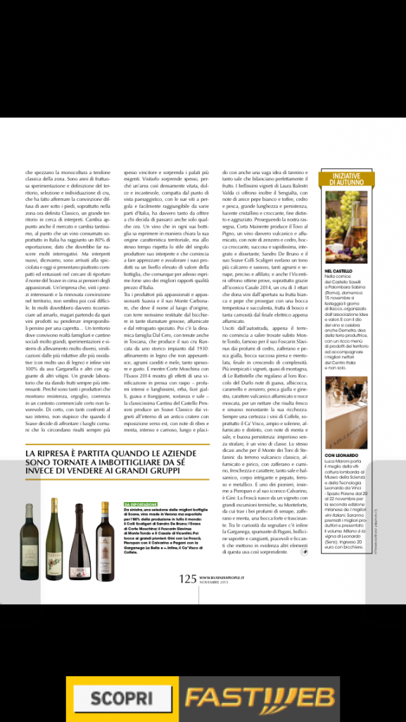 soave business people novembre 2015 pag 125